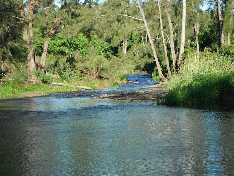 Nepean-River-Fishing-Trip