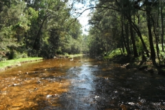 Kedumba-River