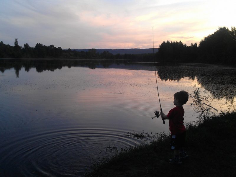 http://mtdan.com.au/wp-content/uploads/2016/11/Family-Fishing-800x600.jpg