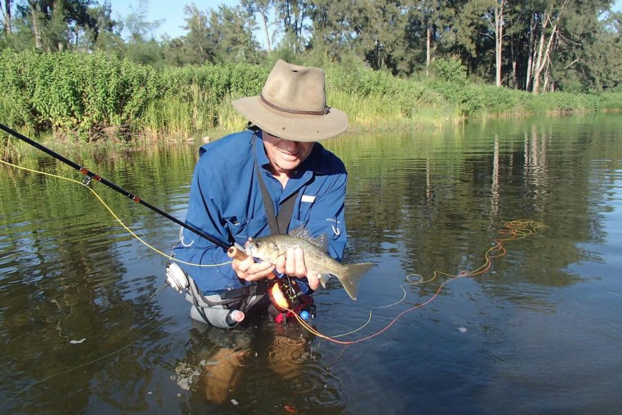 http://mtdan.com.au/wp-content/uploads/2017/03/2-Bass-On-Fly-Mt-Dans-Adventures-900x600.jpeg