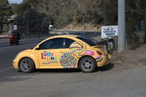 Lollie Bug Hartley NSW